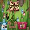 Tavşan Oyunu