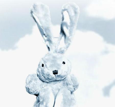 Tavşan Tedavisi
